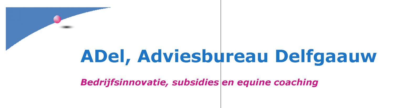 ADel, Adviesbureau Delfgaauw